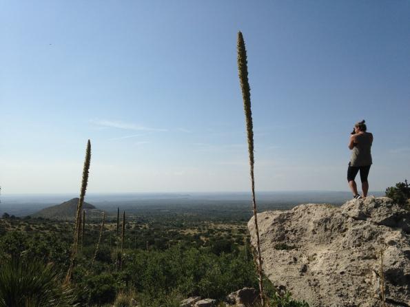 smith trail thu texas